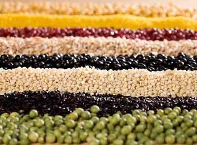 稻、黍、稷、麦、菽
